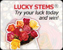 Click & Try Your Luck  Be Our Instant Winner of the Day!