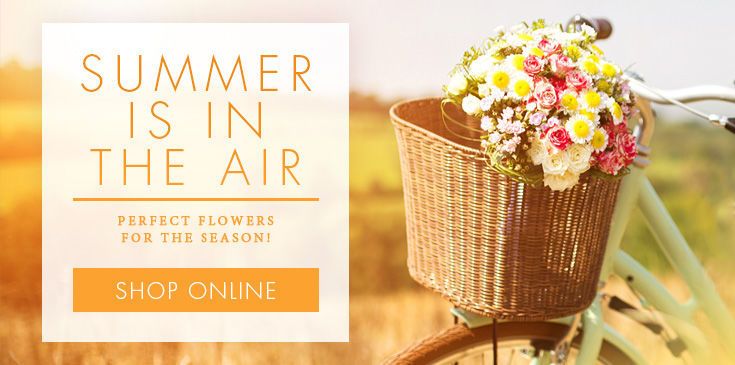 Summer Flower Selection by Blossom Flower Shops Yonkers Florist, While Plains Florist.