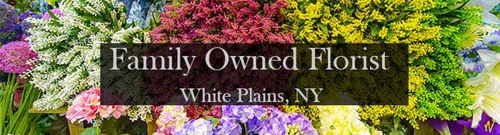White Plains Flower Delivery